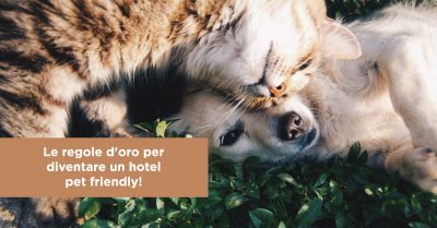 Le regole d'oro per diventare un hotel pet friendly!